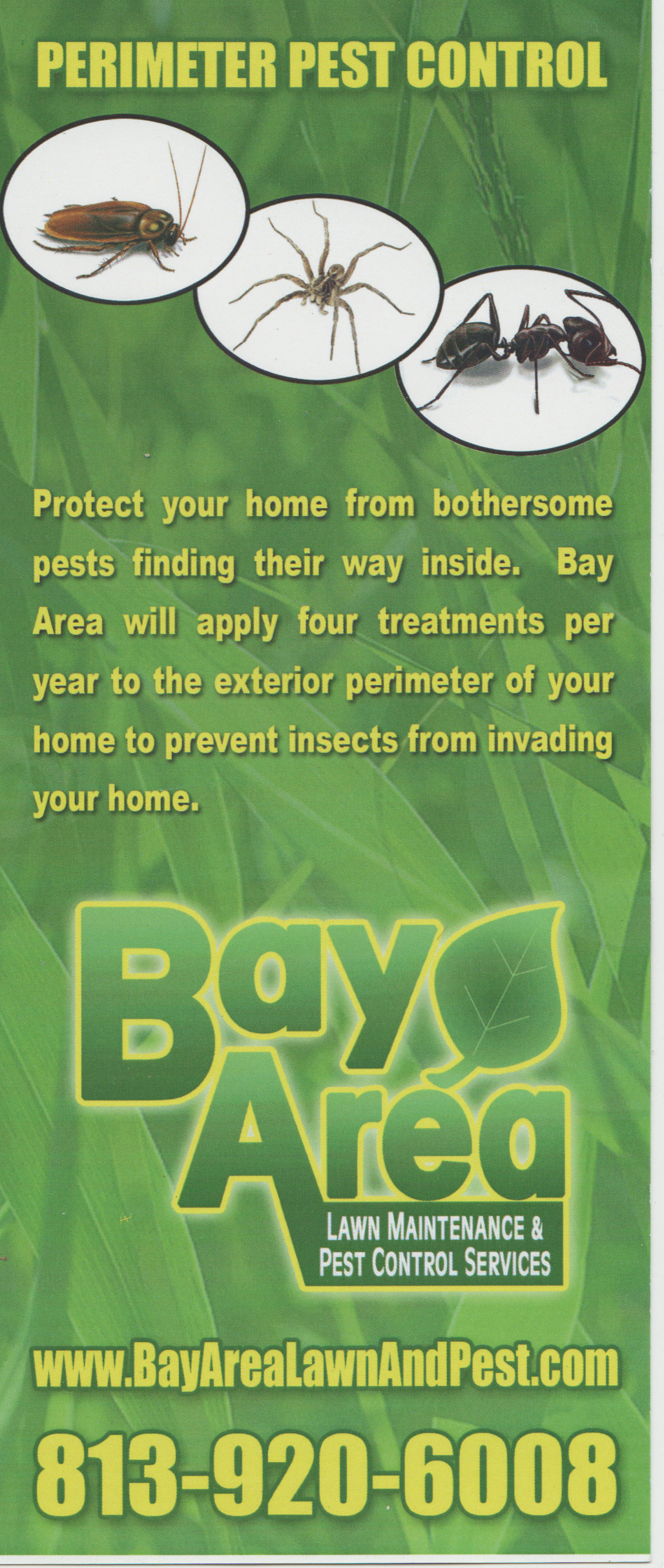 Bay Area Lawn And Pest Control Bay Area Lawn Amp Pest Control