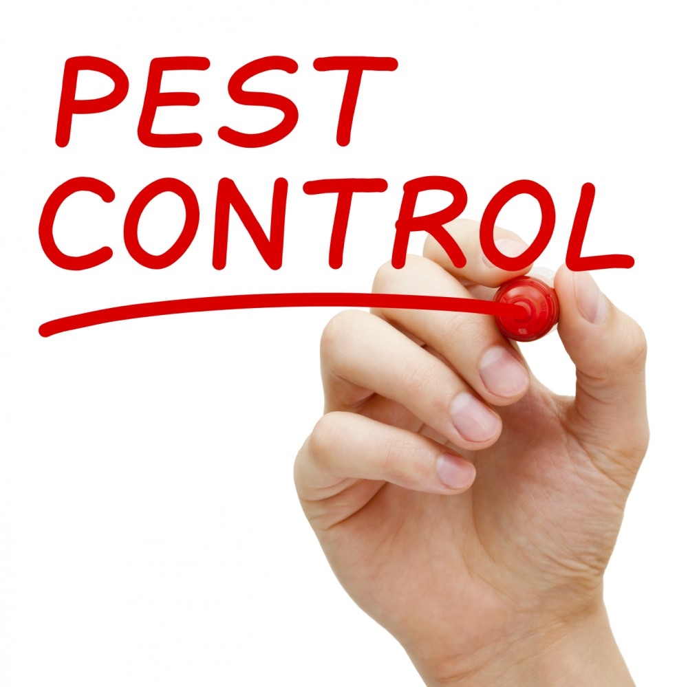 Land O Lakes Florida pest control services.