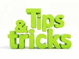 Land o Lakes FL Pest Control Tips